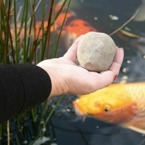 Pond Treatments